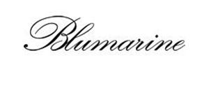 puntidivista-log-_0028_logo_fb_blumarine